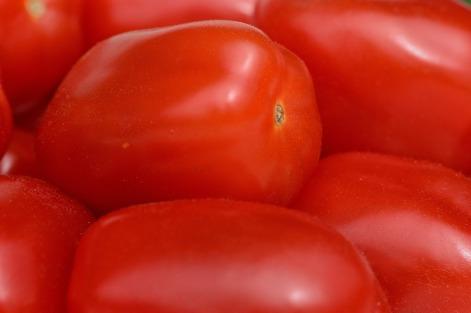 tomatoes-1302799_1280