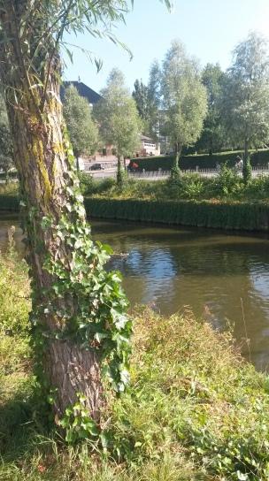 Parte do rio descoberto para quem prefere ficar longe do agito. Foto: Selma Vital