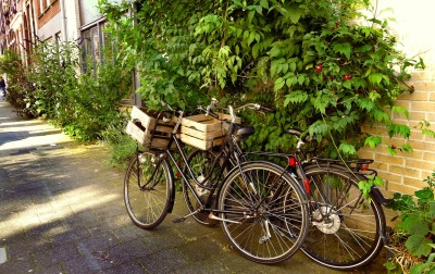 bicycles-1525146_1280
