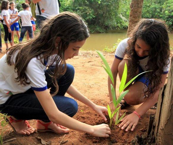 escolas que plantam